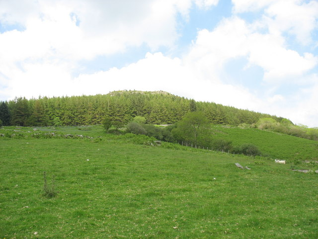 View from the barn across pasture and forest towards the Craig-y-dinas outcrop