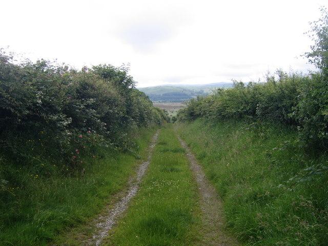 Lon Werdd ger Ty'n-yr-Eithin / Green Lane near Ty'n-yr-Eithin