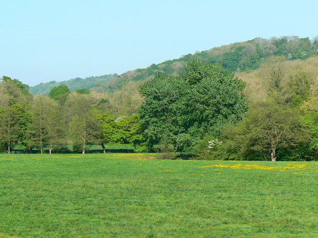 Looking east near Midford
