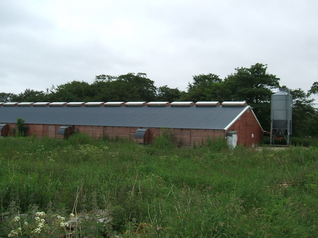 Poultry Shed at Hawkhill