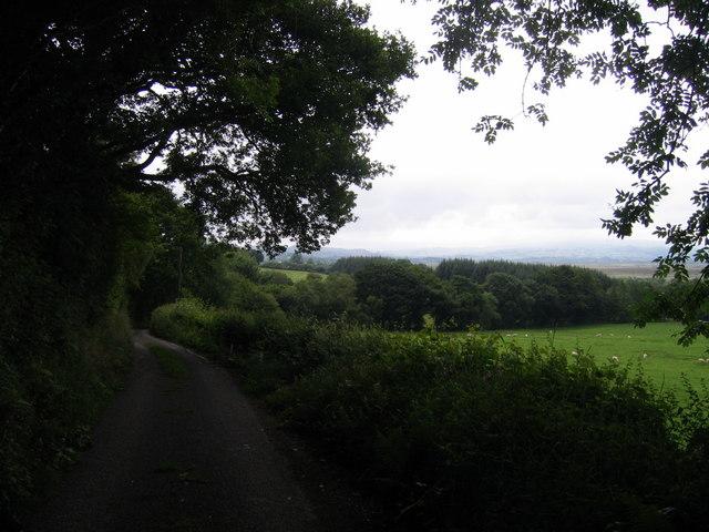 Lon Wledig / Country Lane