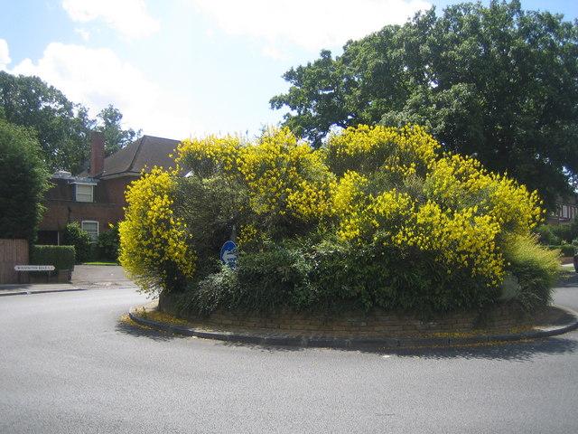 Hampstead Garden Suburb: Winnington Road, N2