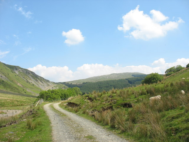Track to Dol-cyn-afon and Allt-lwyd Farms