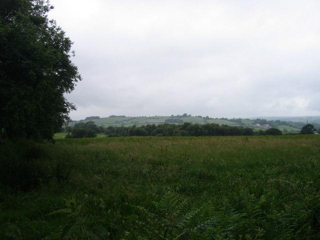 Tir Amaethyddol uwchben Tregaron / Agricultural Land above Tregaron