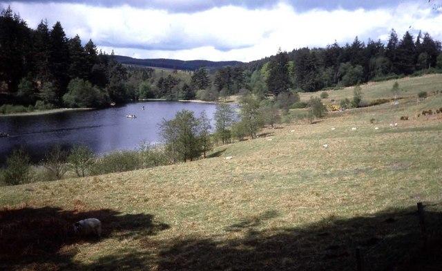 View from Home Farm towards Tumbleton Lake
