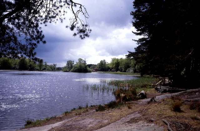 Nelly's Moss Lake
