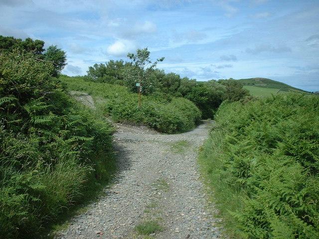 Footpath junction near the Hibernian