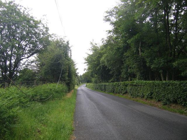 B4342 ger Tregaron / B4342 near Tregaron