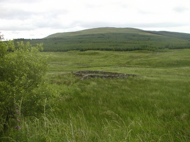 Sheepfold near A702, at NX704852