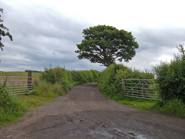 Track to Thornfields