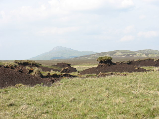 View NE across peat hags