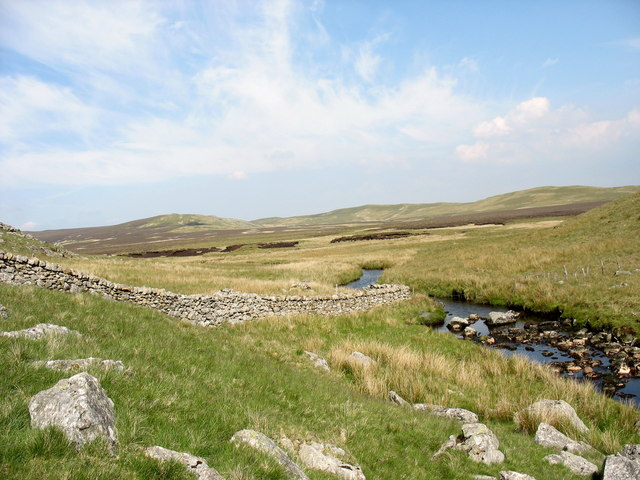 Boundary wall between Ffridd Bach and Waun y Griafolen