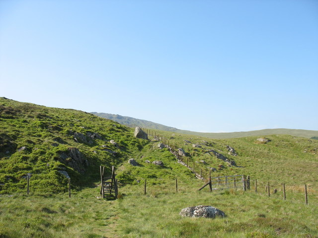Fence and stile below Moel Ddu