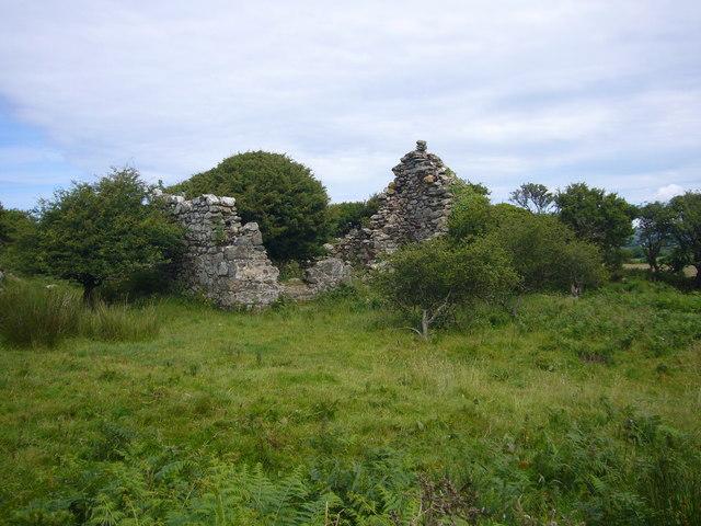 Ruined cottage on Manorowen Moor