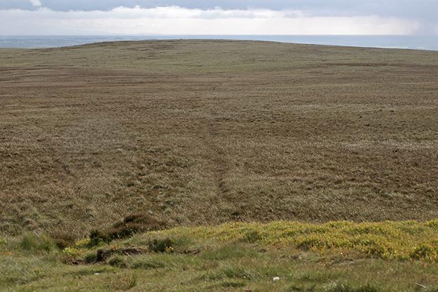 Anglezarke Moor