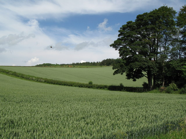 Arable land and UFO near Fourstones