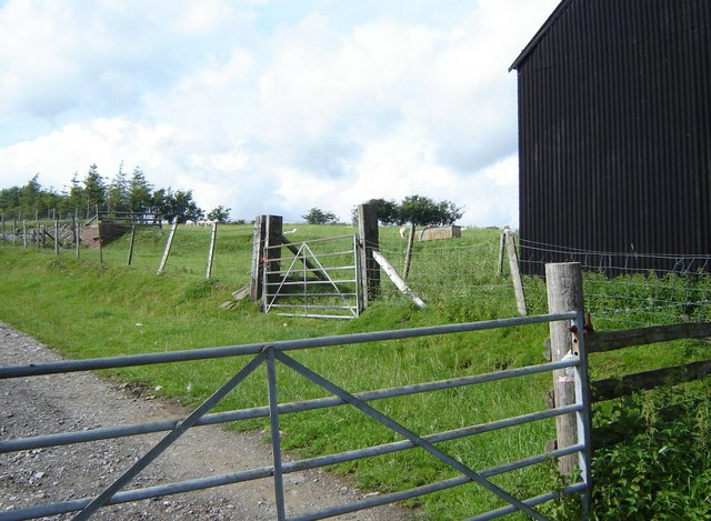 Farm gates and part of a shed