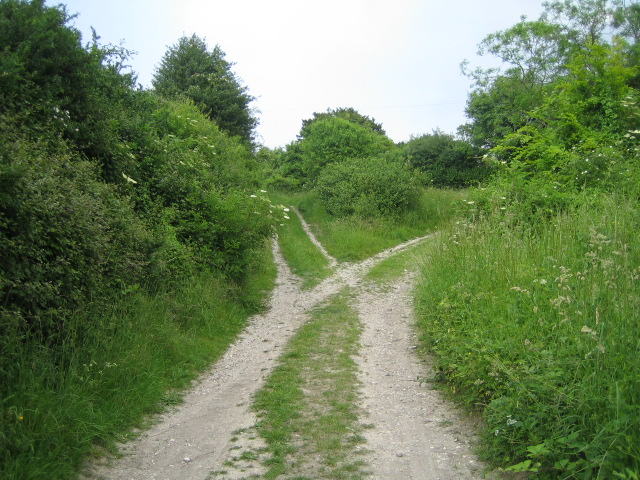 Bridleway near Stoney Batter 2