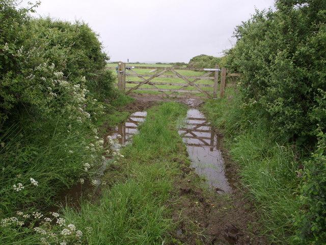 Wet gateway