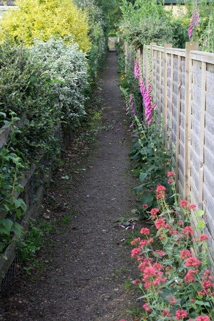 Path Between Gardens, Swainby