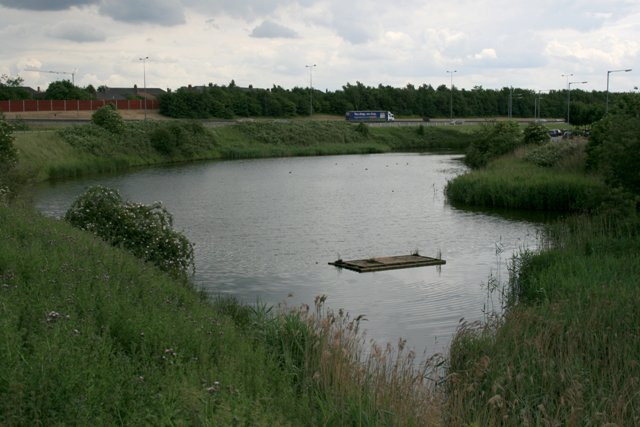 Pond teesside retail park mick garratt geograph for Pond retailers