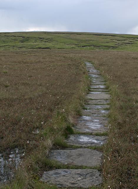 Paved path on Anglezarke Moor