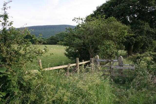 Gate, Public Footpath, Dibdale