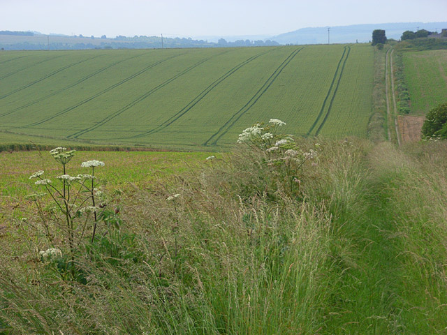 Farmland, Berwick St James