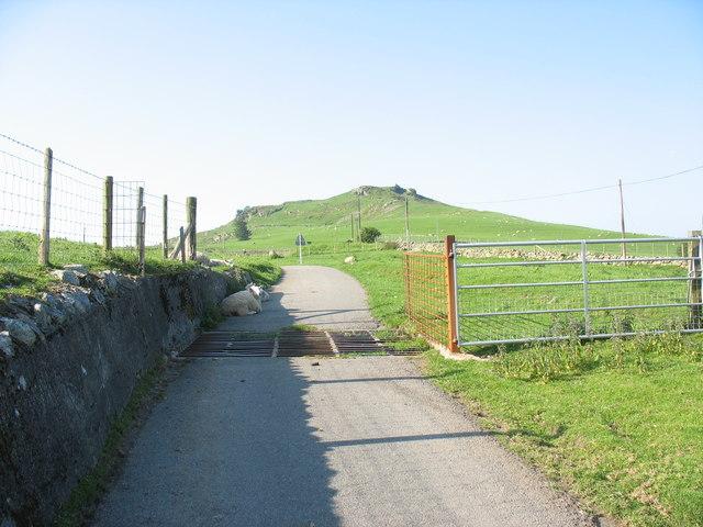 Cattle grid on the Garth Uchaf road