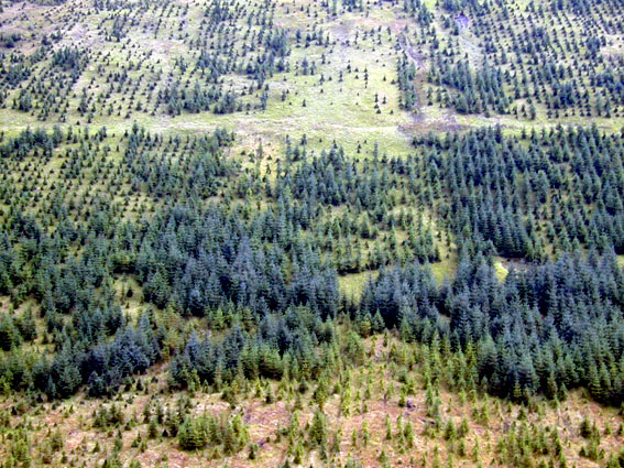 View across Glen Gloy