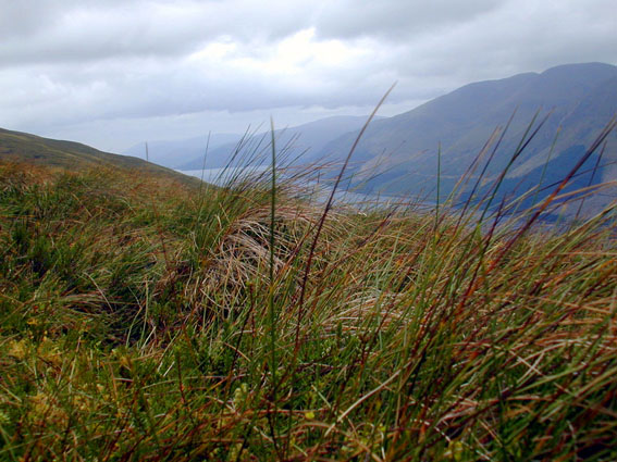 View of Loch Lochy above Glen Gloy