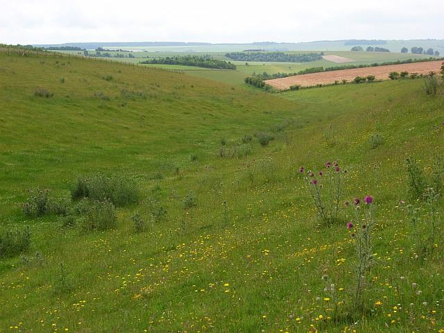 Downland near Deptford