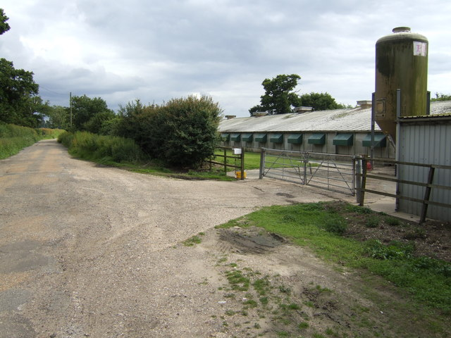 Poultry farm on Procession Lane