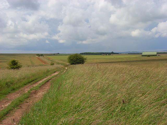 Downs near Deptford