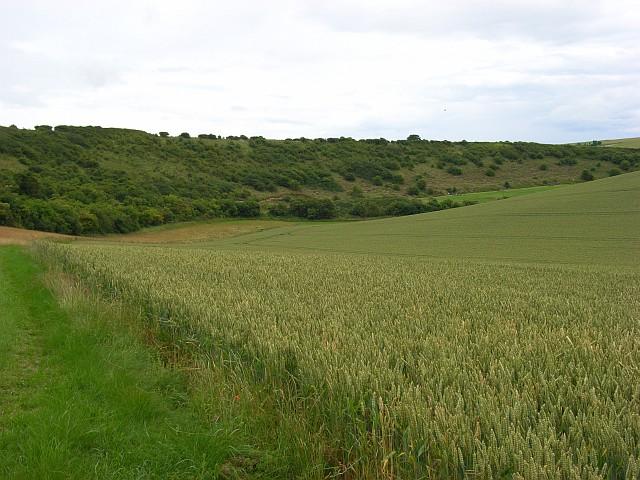 Farmland, Deptford