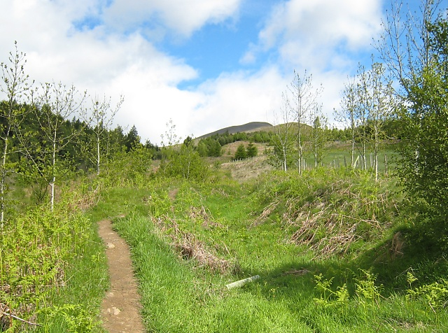 Path to Meall Greigh
