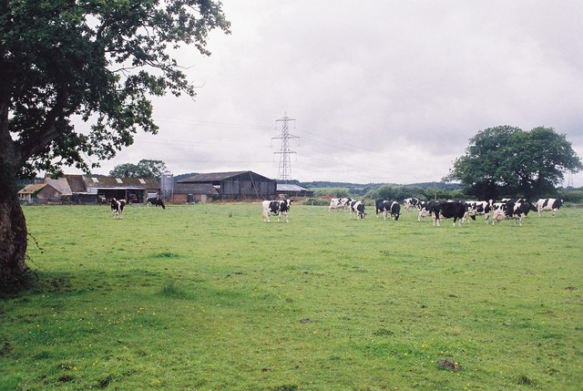 Lower Stockley Farm