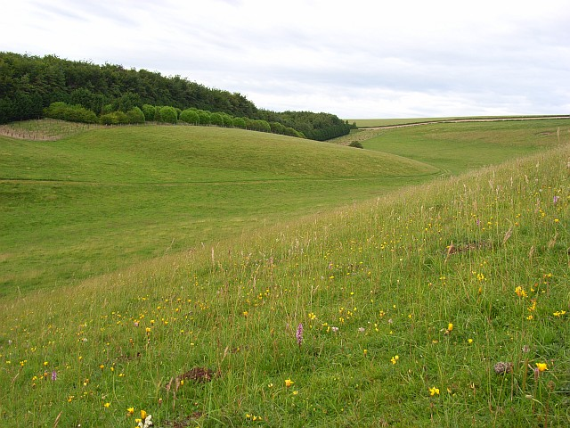 Downland, Steeple Langford