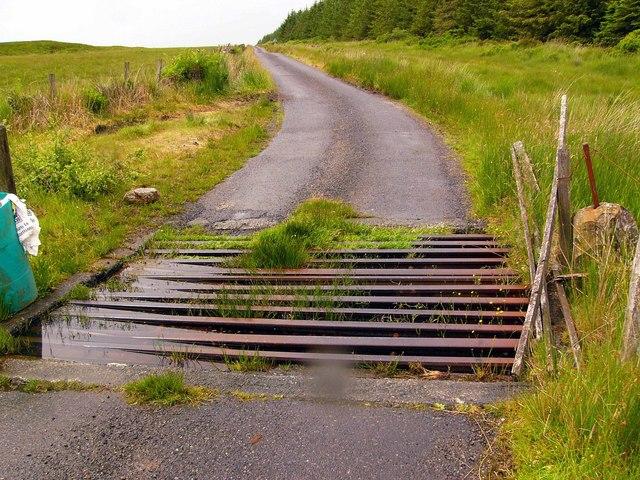 Cattle grid near Artfield