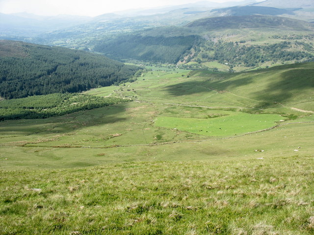 A field of improved pasture below Foel Fach