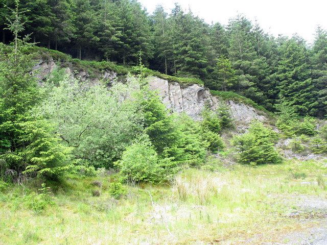 Old quarry in the forest