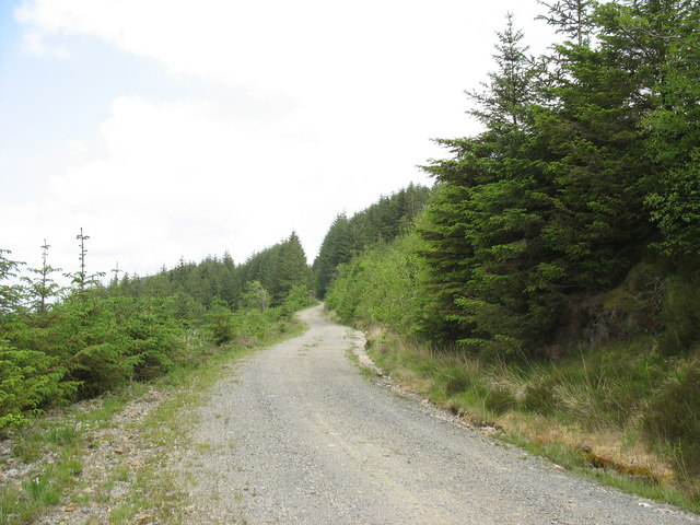 Branch road up to the Graig Dapiog district of the forest