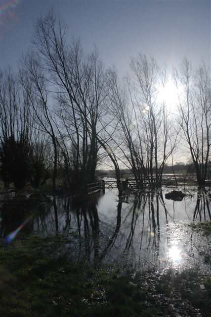 Marston Marshes in flood