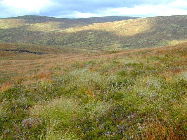 Heathered slopes on Beinn Teallach