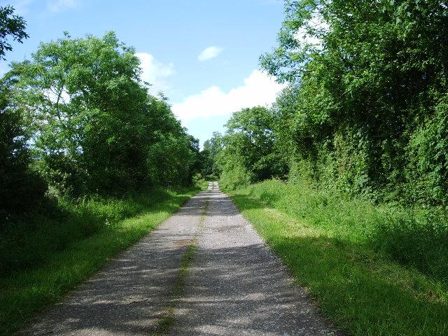 Road to Well Rash