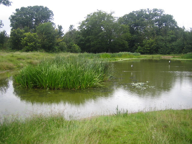 Barn Hill pond