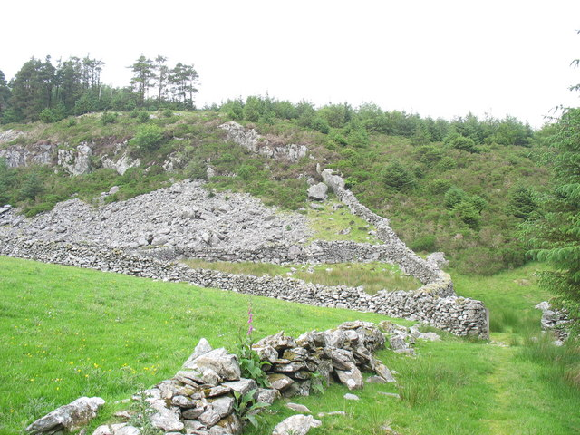 Sheepfold at the edge of the forest