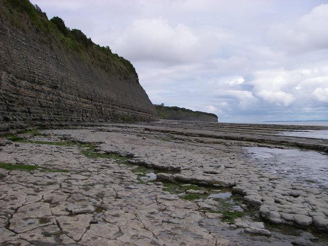 Lower Lias cliffs west of Lavernock Point