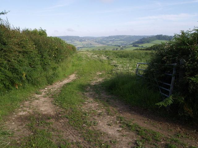 Start of Whitchurch Canonicorum footpath 88