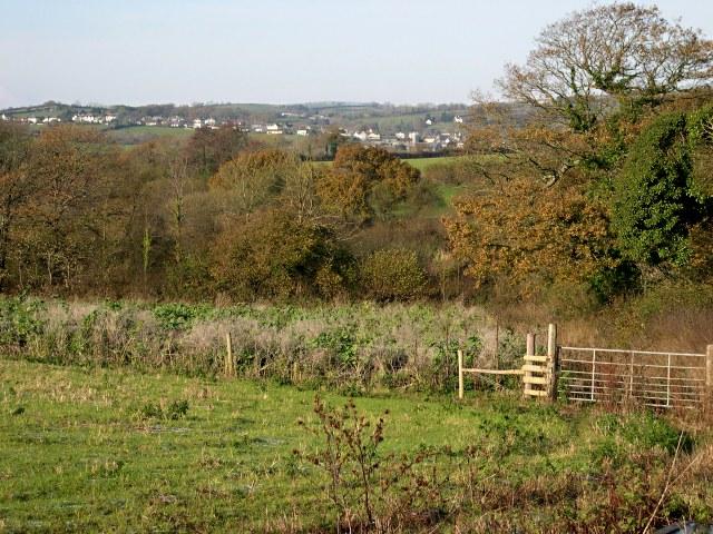 Warleigh Marsh
